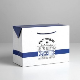 Пакет—коробка «Настоящему мужчине», 28 × 20 × 13 см