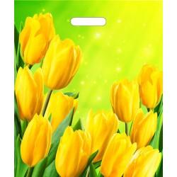 Пакет с вырубной ручкой 45х38см Солнечные тюльпаны