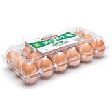 Яйцебоксы