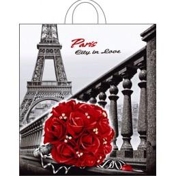 Пакет с петлевой ручкой 40х42см Город любви